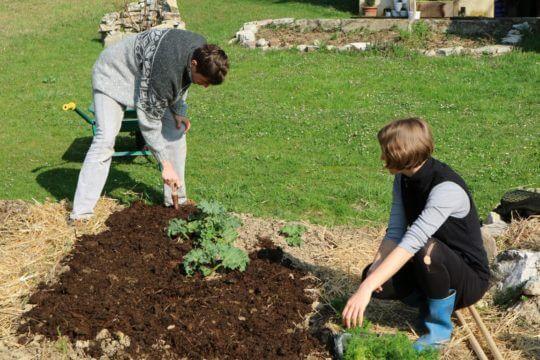 Marec delo na vrtu