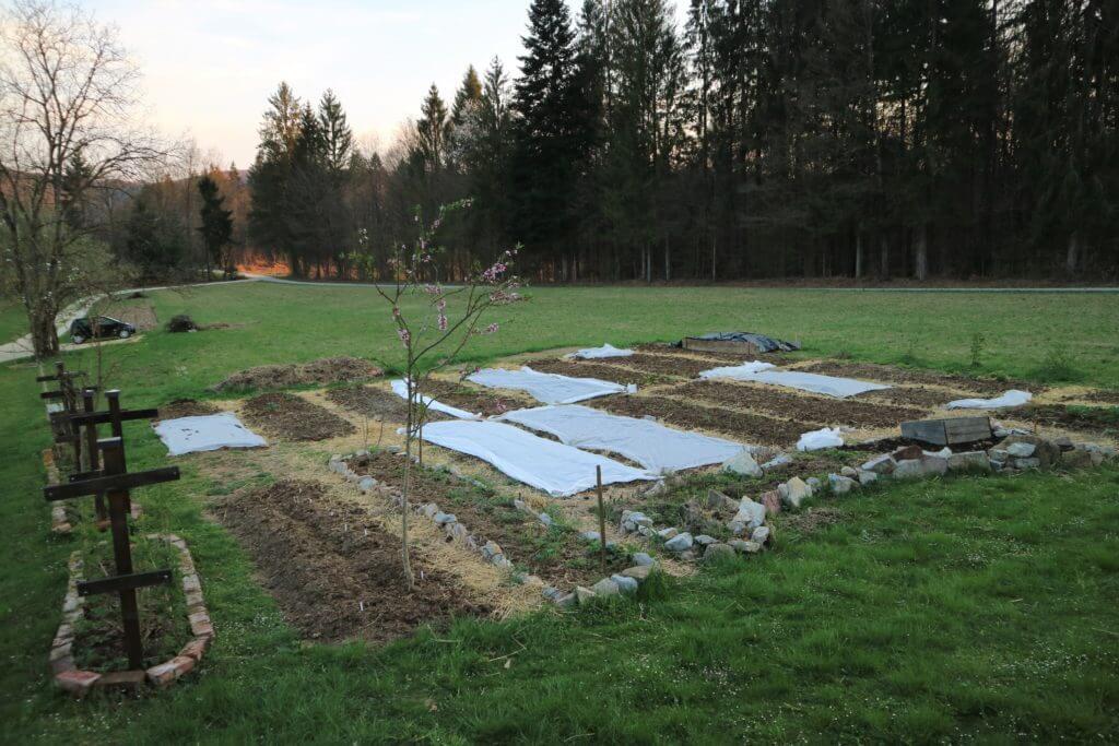 Vrtna opravila v marcu