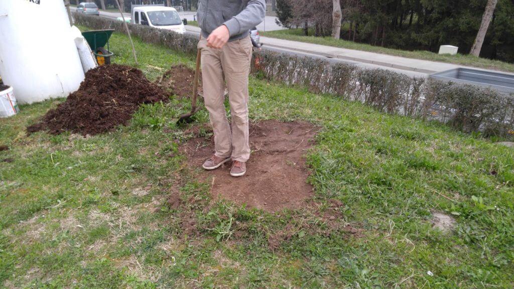 Izravnamo nivo zemlje. Izkopano zemlje kasneje uporabimo za polnjenje visoke grede.