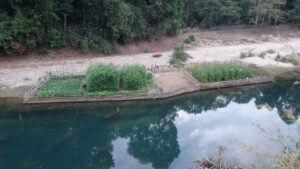 Dva vrtova ob čudoviti reki