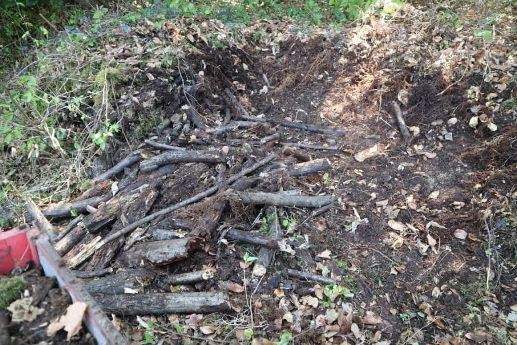 Kup 10 let starih drv v notranjosti