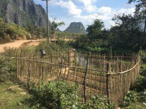 Vrt pri kraju Vang Vieng. Tudi ob reki