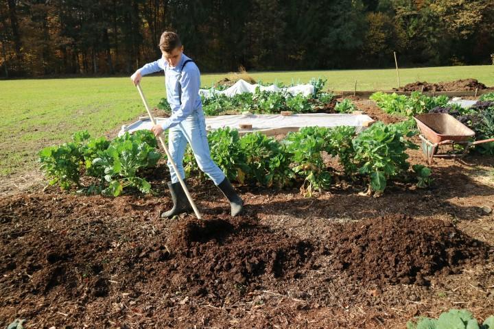Priprava gred s kompostno zastirko jeseni 2018