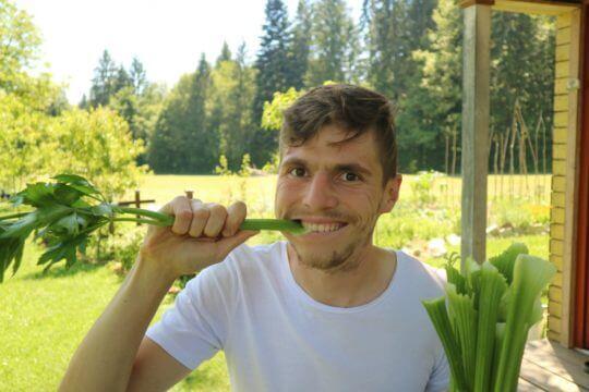 Stebelna zelena je odličnega okusa