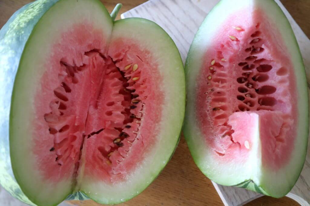 Nezrela lubenica