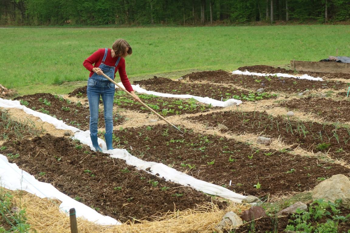 Priprava tal po metodi vrt na novo, pomladi 2017