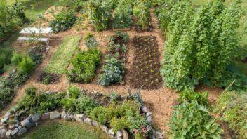 Sonaravno vrtnarjenje
