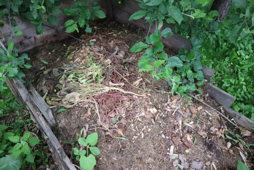 Malo po malo sveže organske mase, ne kompostira pravilno