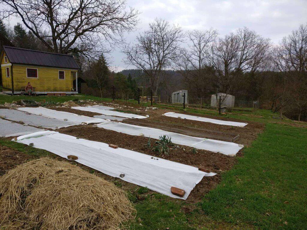Vrtne koprene na gredicah, kjer sva sejala različno zelenjavo.