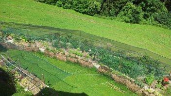Vaši vrtovi #5 - Katka Kranjc, Mozirje