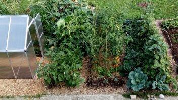 Vaši vrtovi #7- Martina Bastarda, Horjul