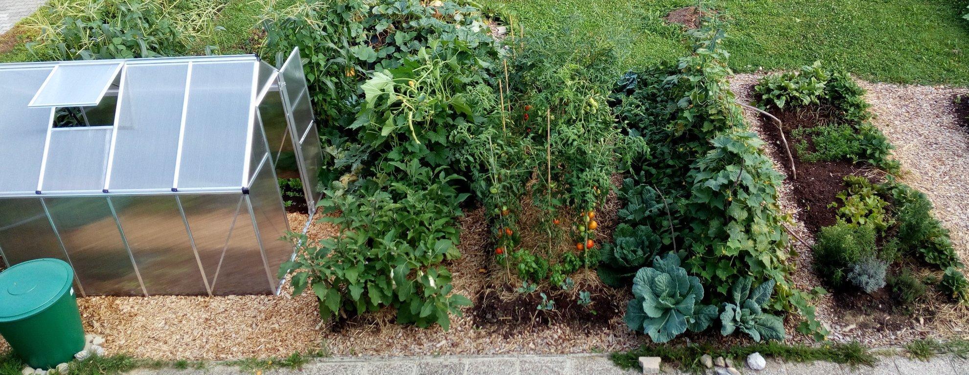 Vaši vrtovi vrt obilja