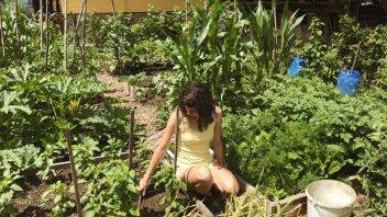 Vaši vrtovi #9- Anja Pirc, Novo mesto