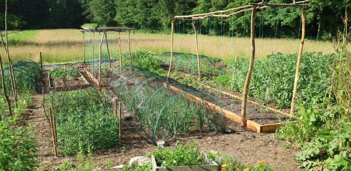 Neekonomičnost vrtnarjenja