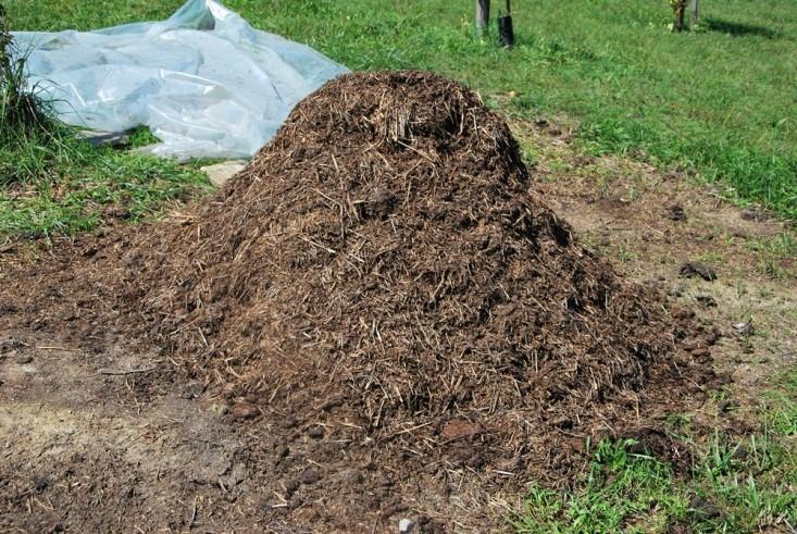 Kompostna gomila