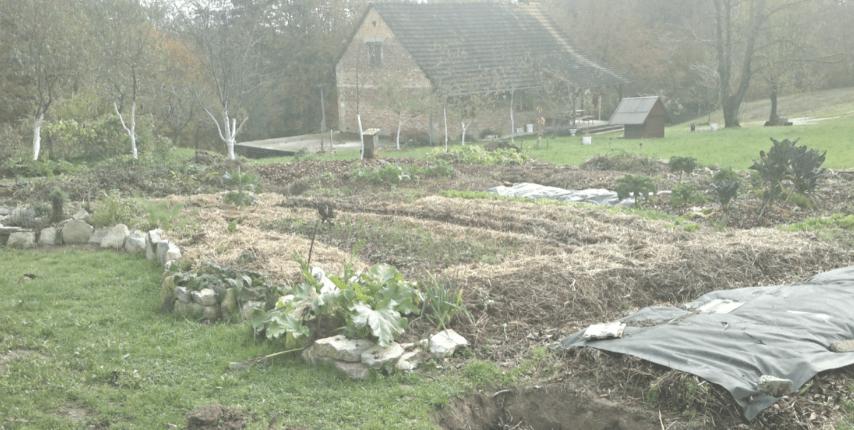 Vrt Obilja, september 2014. Ogromno različnih zastirk na takratnih gredicah.