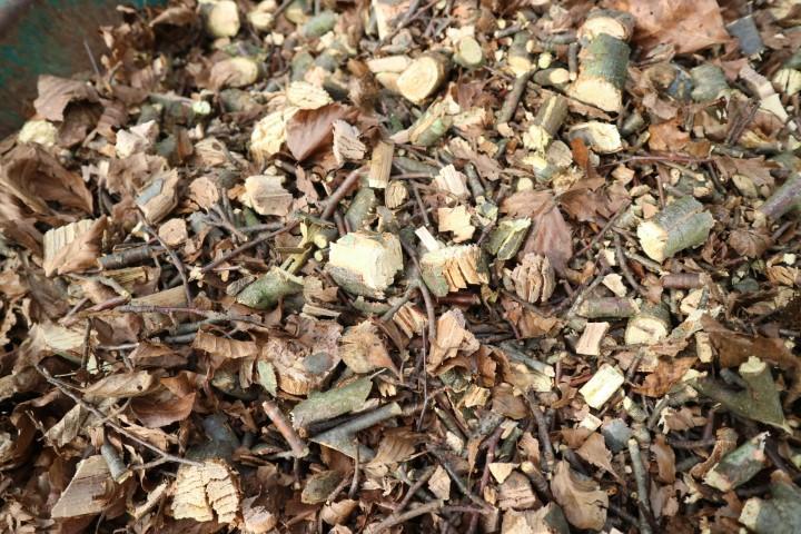 Kako kompostirati odpadnje veje za uporabo na vrtu