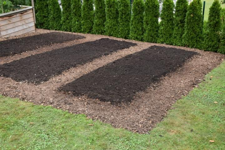 Dodatne tri gredice pripravljene s kompostno zastirko.