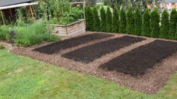 Vaši vrtovi #11 - Miha Možina, Pernica