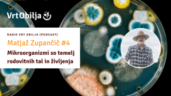 Matjaž Zupančič #4 - Mikroorganizmi so temelj rodovitnih tal in življenja
