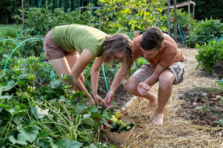 Na vrtni poti velikorat čepimo. Prostora za čepenje mora biti dovolj.