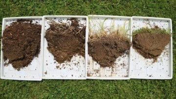 Kakšna je struktura tal na vrtu brez prekopavanja?