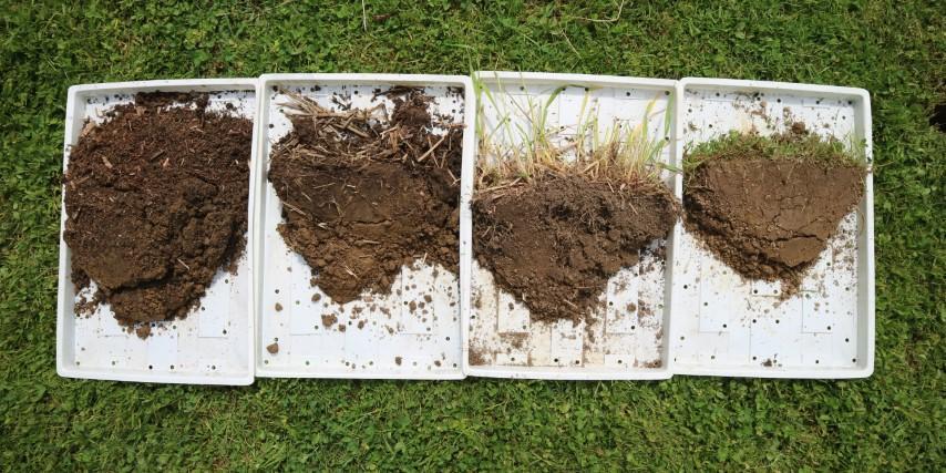 Struktura tal na vrtu brez prekopavanja