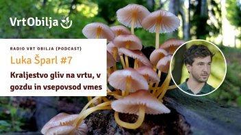 Luka Šparl #7 - Kraljestvo gliv na vrtu, v gozdu in vsepovsod vmes