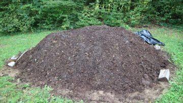Kdaj gnoj postane kompost? Test zrelosti komposta 1