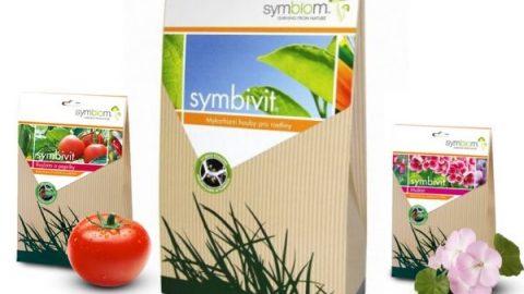 Symbivit mikorizne glive