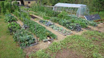 Kako zgleda Vrt Obilja v septembru