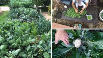 Vaši vrtovi #18 - Jule Nikler in Mojca Padežnik, Srednja vas (Poljane nad Škofjo Loko)