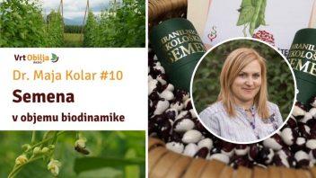 Dr. Maja Kolar #10 - Semena v objemu biodinamike